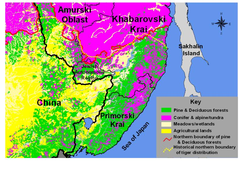 "Figure 3. The historical northern distribution of tigers (derived from Heptner and Sludski 1973) closely mirrors the northern distribution of the Korean pine and deciduous forests that define the ""Ussuriisk taiga,"" that is, the forests of this region of the Russian Far East."